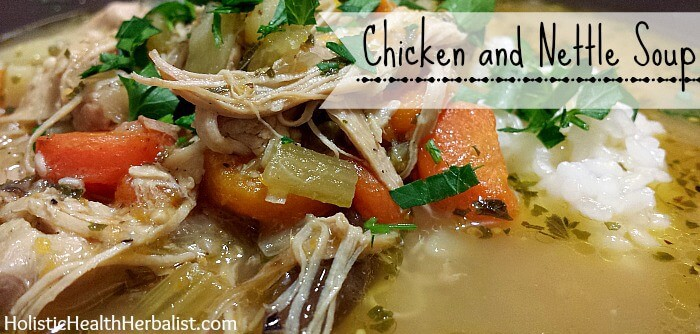 chicken and nettle soup