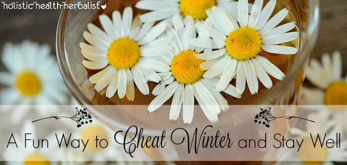 how to cheat winter and stay well